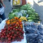 香港ならではの珍しい野菜をご紹介!