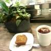 《香港太子カフェ》お花屋さんにあるカフェでグリーンに癒されるの巻♡花粉熱@Prince Edward