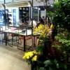 《中環カフェ》IFCモールの中のオシャレなフレンチカフェAgnes b.@セントラル