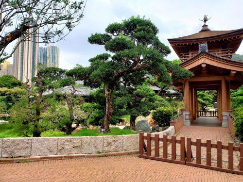 香港の公園の中